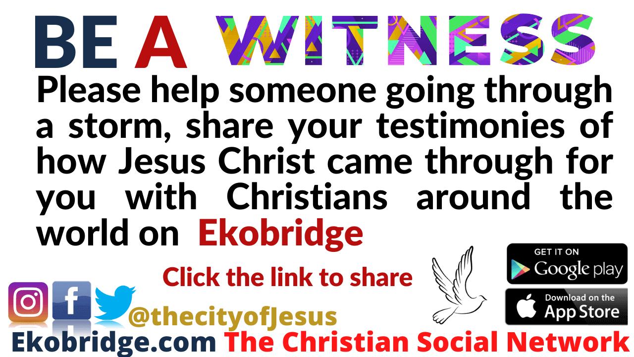 witness 1280