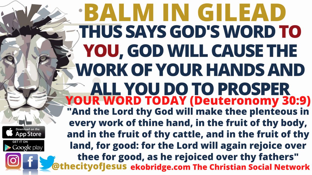 Deuteronomy 309 BALM IN GILEAD 1920 x 1080