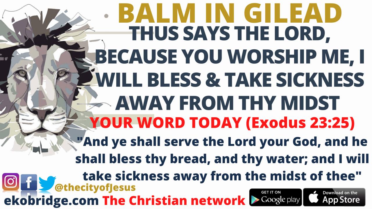 Exodus 23_25  - BALM IN GILEAD 1920 x 1080